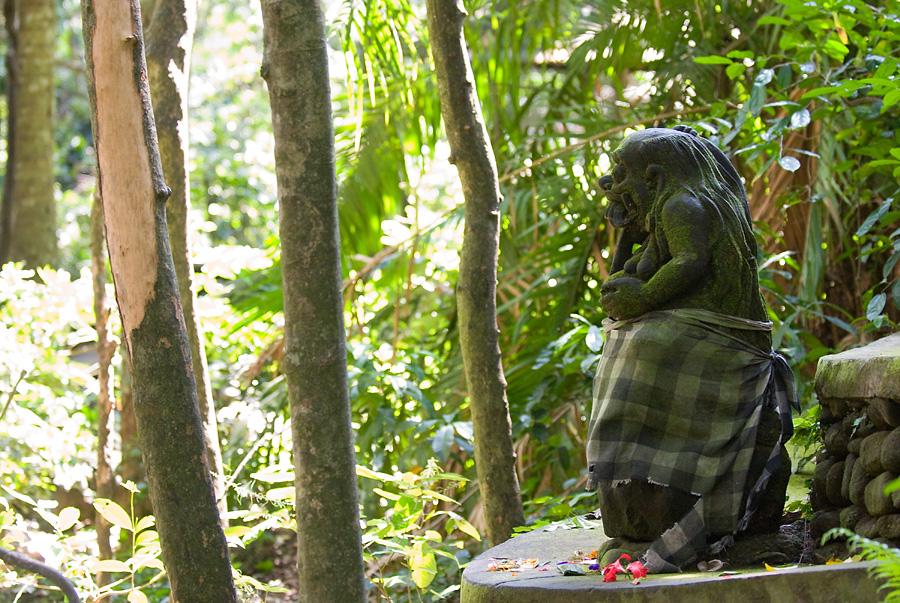 Monkey Forest