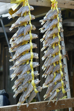 Dried Fish in Seoul Market